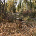 Fall_river